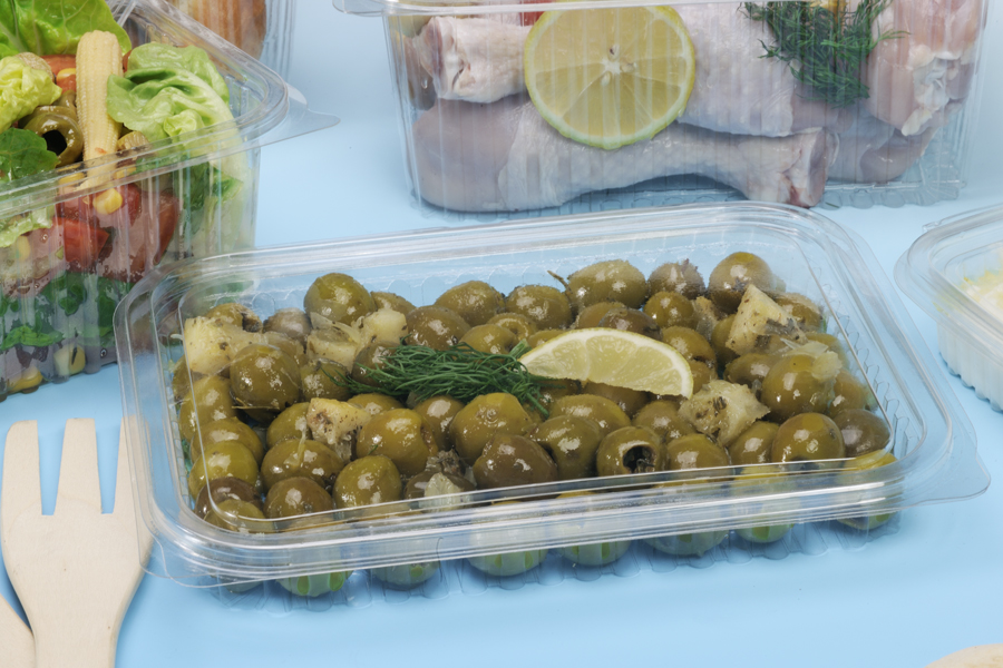 Diposable Rectangular Food Clear Container